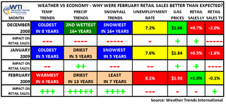 Weather Trends International's February 2009 Retail Sales & Weather Summary
