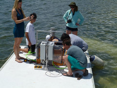Teens4Oceans students working on equipment on the floating platfrom in Grand Cayman.