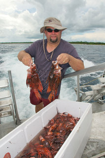 Taming the Lionfish: Cayman Fights Back Against the Invaders