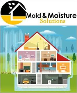 Mold and Moisture Solutions Announces Crawl Space Encapsulation System