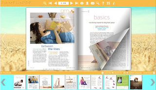 eFlip Standard supports convert many PDFs to flash page flip ebooks