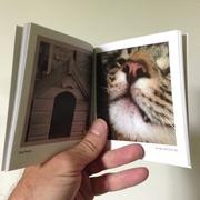 A Printrgram photo book
