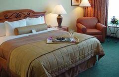 Hilton Austin Airport Hotel Rooms