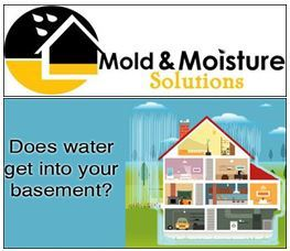 """Mold & Moisture Solutions Helps Homeowners Prepare for """"Mold Season"""""""