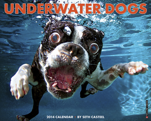 The Official 2014 Underwater Dogs Calendar