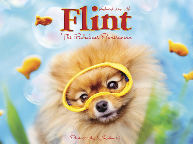 Adventures With Flint, The Fabulous Pomeranian, from Willow Creek Press