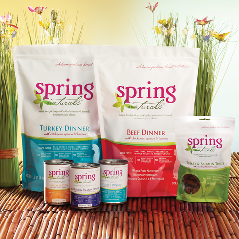 Spring Naturals, premium dinners and treats for pets. Domestically sourced, real meat is always the #1 ingredient, followed by healthful superfoods like eggs, quinoa, blueberries, and spinach.