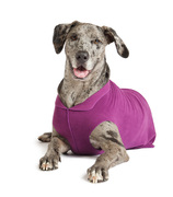The Stretch Fleece popover jacket is a signature product from Gold Paw Series, made with recycled polyester and 7 percent spandex for a 4-way stretch and unbelievably soft, velvet-like finish.