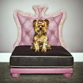 Signature Doggie Introduces Limited Production  Signature Doggie Beds For Pet Celebrities and Celebrities' Pets    …