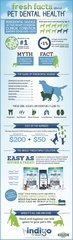 The Facts About Pet Dental Health