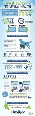 Fresh Facts About Pet Dental Health