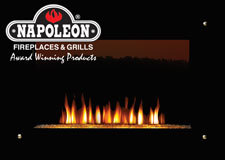 Go Green with Electric Fireplaces from Napoleon® Fireplaces
