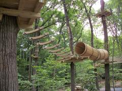 """Some of the """"crossings"""" or """"challenge bridges"""" climbers navigate at The Adventure Park. (photo by Anthony Wellman)"""