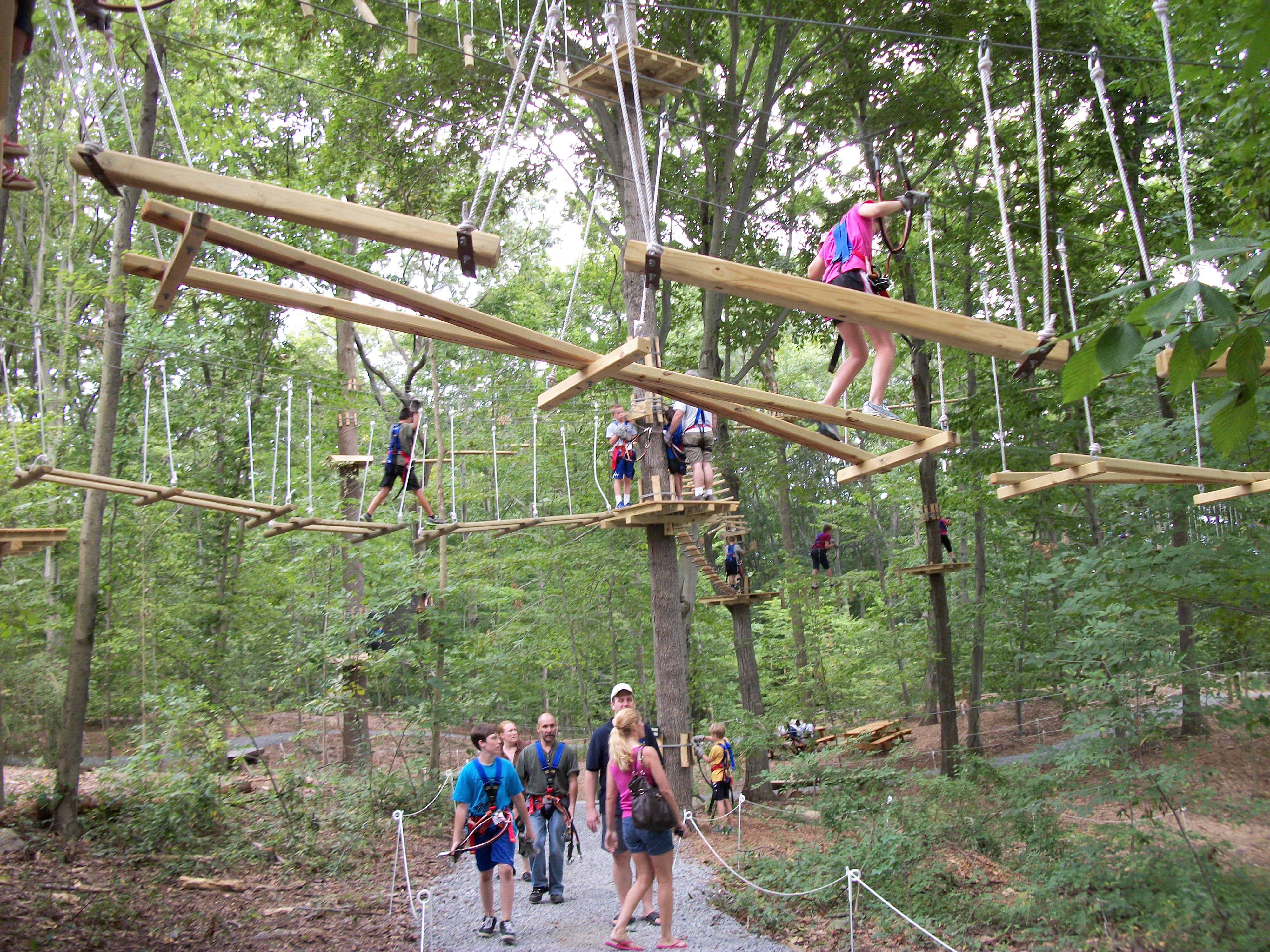 The Adventure Park At The Discovery Museum Reopens For