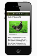 Cluck-ulator Breed Page Screenshot