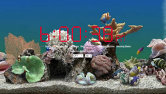 Online Alarm Clock with a Virtual Aquarium Background