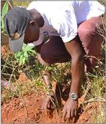 One of the Blue Disa farmers gives onlookers a demonstration on how to correctly replant the bamboos shoots.