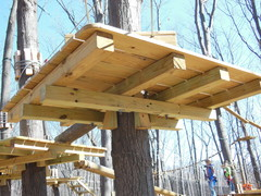 The tree platforms of Outdoor Ventures' Adventure Parks use tree-friendly means to secure them. These are at The Adventure Park at West Bloomfield,MI. (photo: Anthony Wellman)
