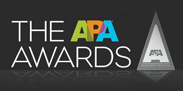 2014 APA Awards