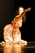 Institute of Dance Artistry (IDA) is presenting the 10th Anniversary of the Generations Dance Concert at Montgomery County Community College.