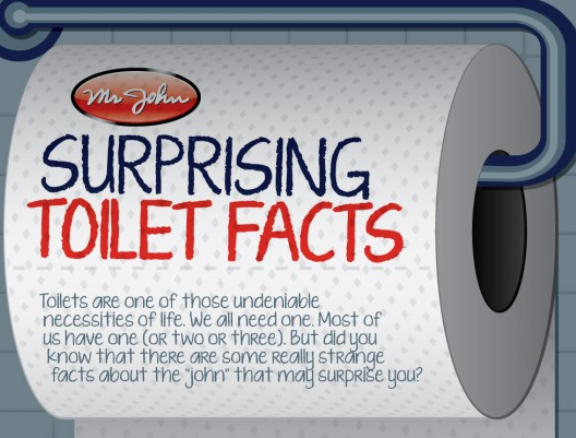 25 toilet facts you wont want to flush  msncom
