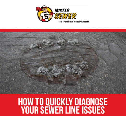 The best way to prevent sewer line issues in your home is to make yourself aware of the common signs of a problem.