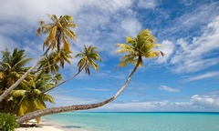 Tahiti & New Zealand Vacation with Air from Pacific Holidays