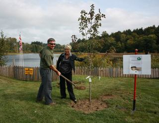 Celebrating National Tree Day with Patient News