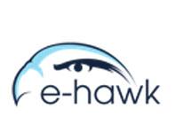 E-Hawk