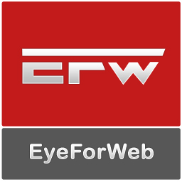 EyeForWeb, a Professional Web Design and Development Company, launches its new website