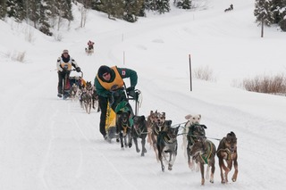 Streeper Defends IPSSSDR Title as 22 Sled Dog Teams Compete for Wyoming Sled Dog Race Purse