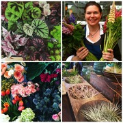 Bridget Davis, owner of Mahonia, enjoys working with a large selection of flowers and plants.
