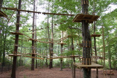 It's hard to imagine The Adventure Park without trees. Trees make it it all possible! (Photo: Outdoor Ventures)