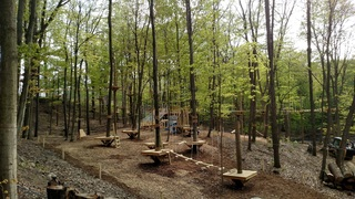 Treetop Adventure Park Opening This Friday