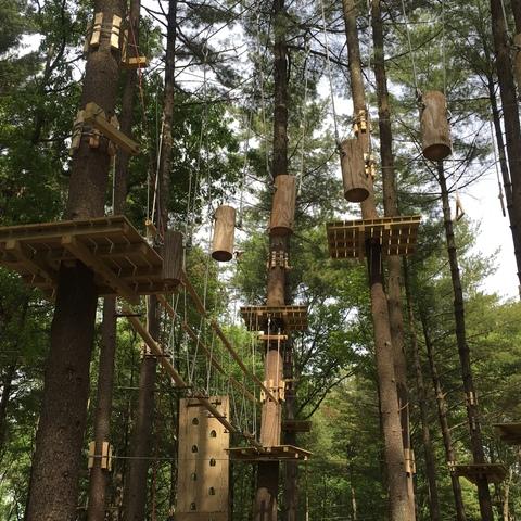 Forest Playground Ideas