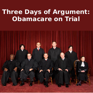 Three Days of Argument: Obamacare on Trial Audio Book