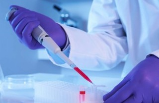 Global Stem Cells Group to offer Stem Cell Training Certification course Oct. 1 and 2, Following International Symposium…