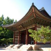 Korea Vacation Specials
