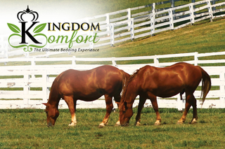 Kingdom Komfort Begins Producing Bulk Horse Bedding Pellets from its Pellet Mill in PA