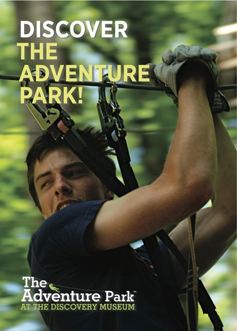 Discover fun in our trees at The Adventure Park!