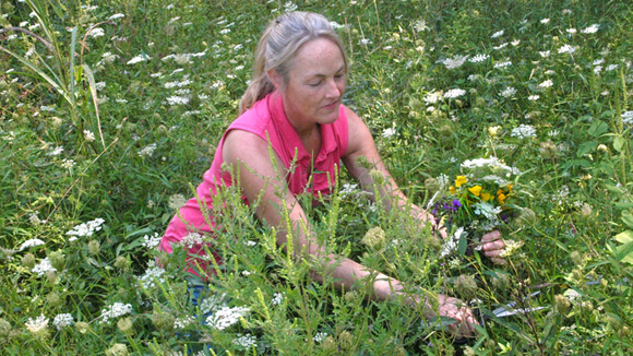 Lisa Hagan, Founder of Splendid Bee, sources wildflowers that she uses to make her one-of-a-kind beeswax luminary creations.