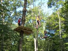 This photo shows young and old, zip liners and challenge bridge crossers, alike, sharing The Adventure Park experience.