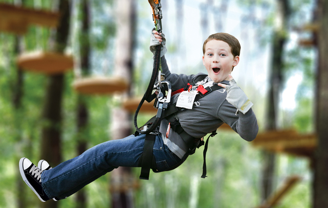 Zip-line heaven at TreeTop Adventures!