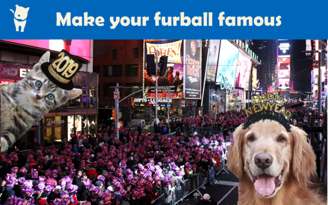 Enter our contest for a chance to have your dog or cat featured with Scollar on an iconic Times Square billboard on New Year's Eve.