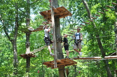 Climbing higher at The Adventure Park. This coming weekend a group of three like this would mean three extra dollars donated by the Park for planting three new trees in our national forests.