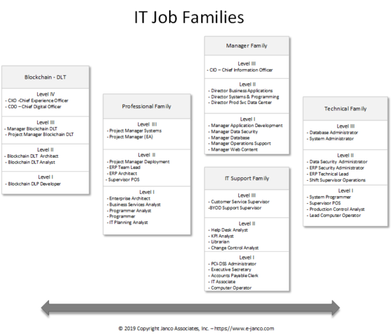 Every IT job can be placed in one of the unique families defined by this system