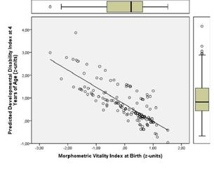 Unique index at birth predicts disability at 4 years of age / Fetal Growth determines preschool performance