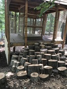 In keeping with The Adventure Park's natural forest theme, these clever steps were created out of tree trunks.