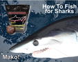 How to fish for sharks. One word ...Chum!