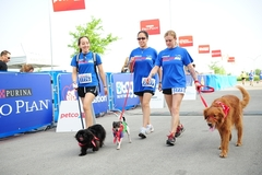 5K9 Walk Run, an event for you and your best friend!